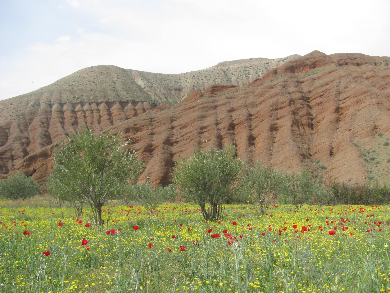 ظرفیتهای زنجان در اکوتوریسم از زبان مدیر کل منابع طبیعی استان؛