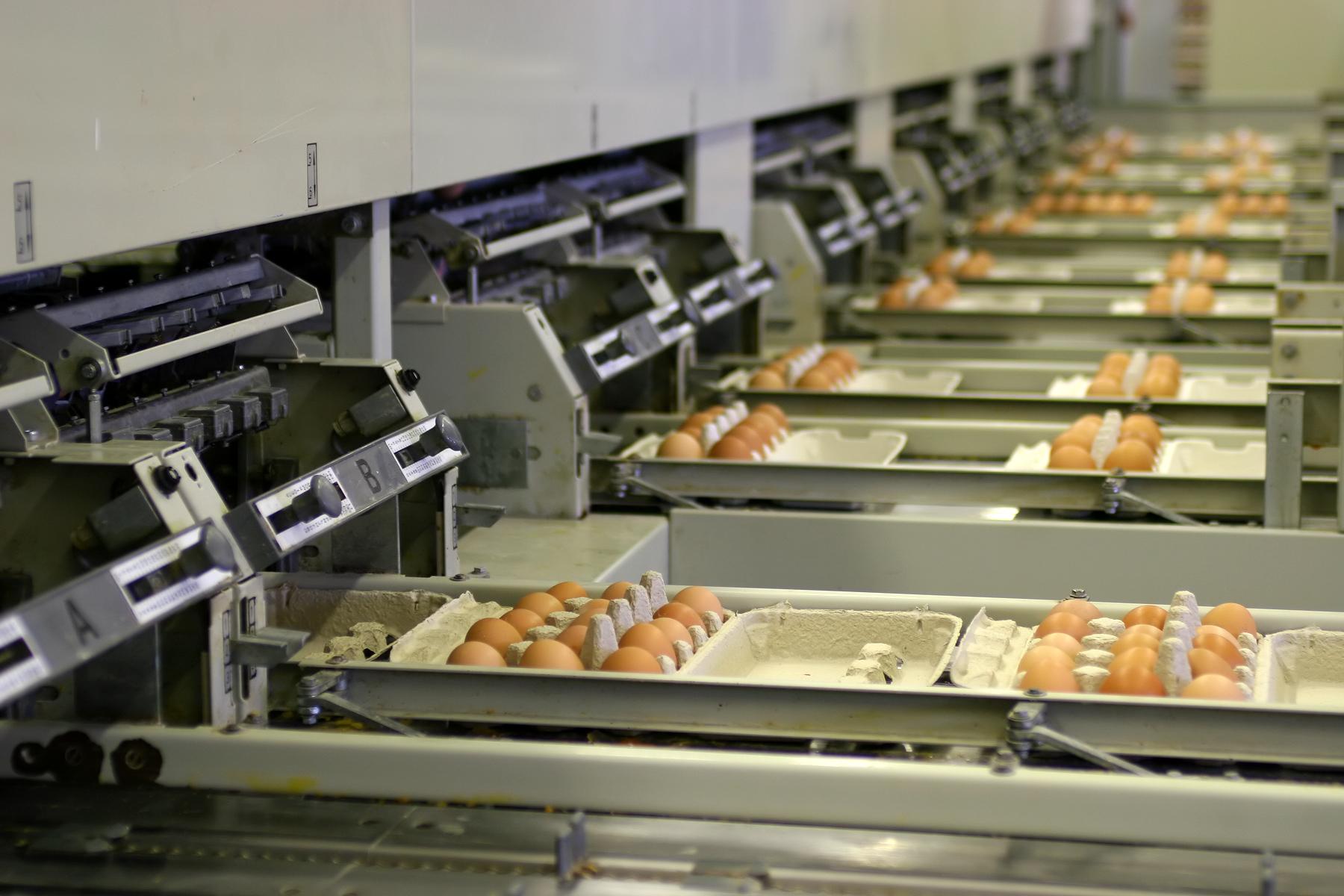 ۸۳ درصد نمونه های واحدهای تولیدی زنجان مطابق با استانداردهای ملی است
