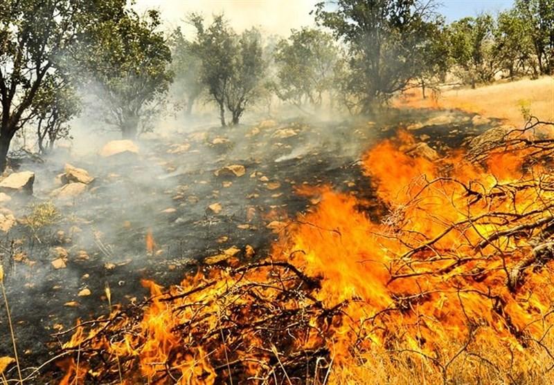 ۲۶ هکتار از اراضی سلطانیه در آتش سوخت