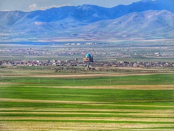 مدیر کل منابع طبیعی استان: چمن سلطانیه در معرض تهدید است